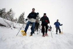 Séminaire hiver à la neige en Savoie et Haute-Savoie
