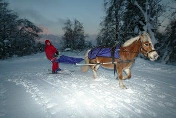 Activités détente pour séminaire Savoie et Haute Savoie