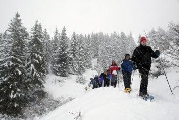 Séminaire rando raquettes Savoie te Haute-Savoie